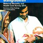 Survey on maternal mortality