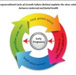 Breaking the Vicious Cycle of Intergenerational Undernutrition