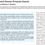 Inorganic Arsenic and Human Prostate Cancer