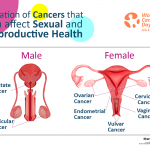 Cancers that can affect your Sexual and Reproductive Health