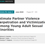 Intimate Partner Violence Perpetration and Victimization Among Young Adult Sexual Minorities